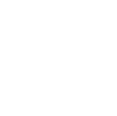 Henry's Excavating Inc. icon long reach